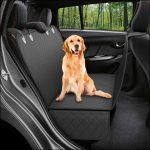 Top 10 Best Dog Car Seat Covers in 2021 Reviews | Buyer's Guide