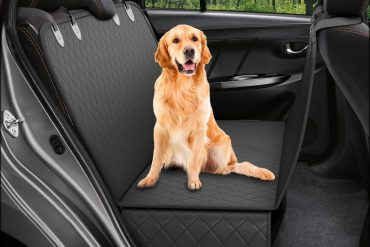 Top 10 Best Dog Car Seat Covers in 2020 Reviews & Buyer's Guide