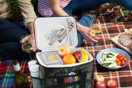 Freezable Lunch Bags