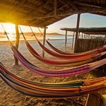 Top 10 Best Hammock Beach Resort in 2021 Reviews | Buyer's Guide