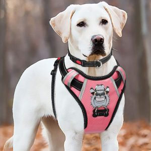 BABYLTRL No-Pull Anti-Tear Reflective Adjustable Pet Harness with Handle