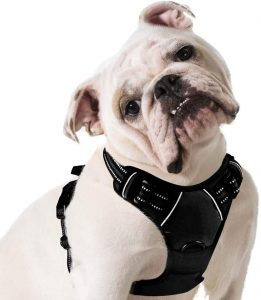 Eagloo No Pull Pet Vest with Handle