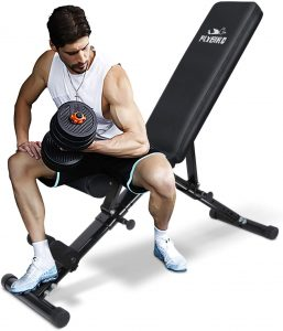 FLYBIRD Weight Bench