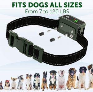 TBI Pro Shock Dog Training Collar - IPx7 Waterproof