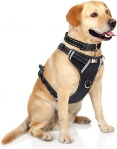 WINSEE No Pull, Adjustable Reflective Pet Vest