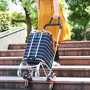 Beebee Run Folding Shopping Cart